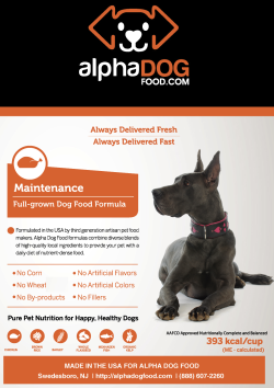 Adult-Maintenance-Dog-Food-1-250x354